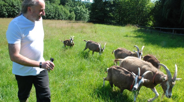 Dieter Spaar und seine Ziegen